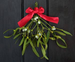 44721232-christmas-mistletoe-with-red-ribbon-bow-over-dark-wood-background